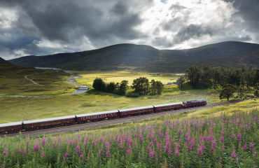 the Royal Scotsman on the line from Perth to Inverness at Dalnaspidal, nr Dalwhinnie, Badenoch and Strathspey, Scotland - David Noton Photography